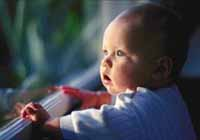 Picture of a baby gazing out the window while holding himself up